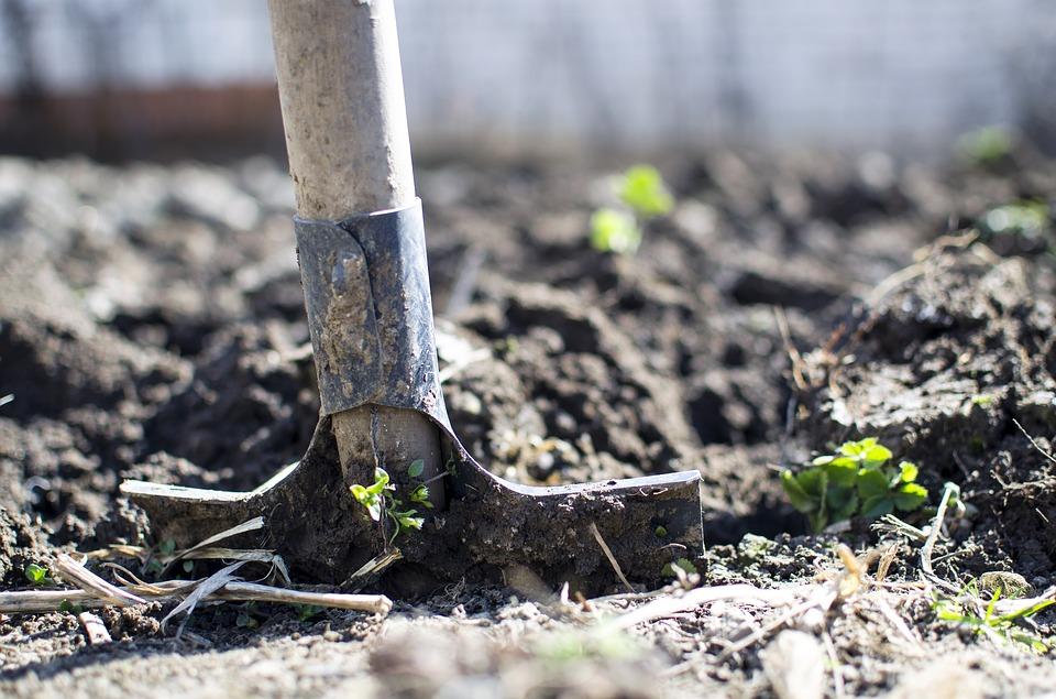 ショベルで土を掘り起こしている最中