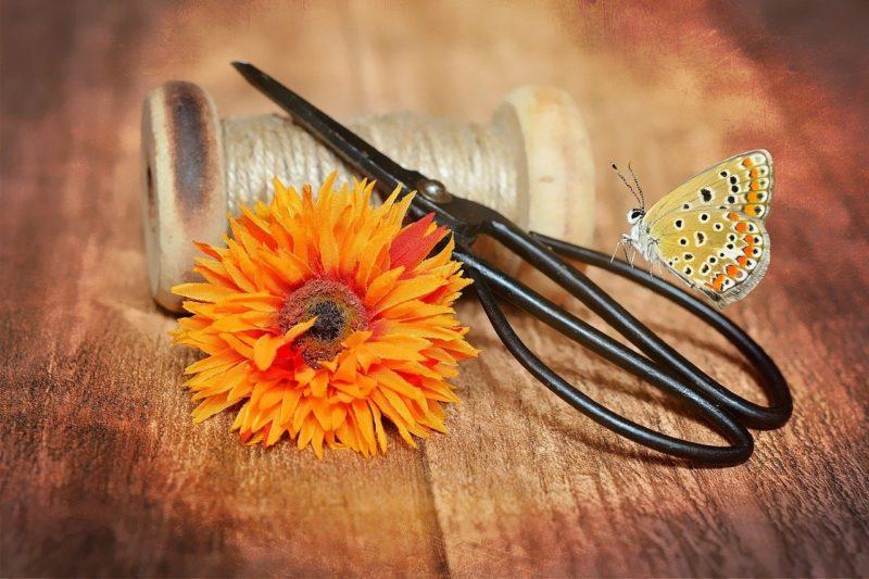 剪定バサミとオレンジの花