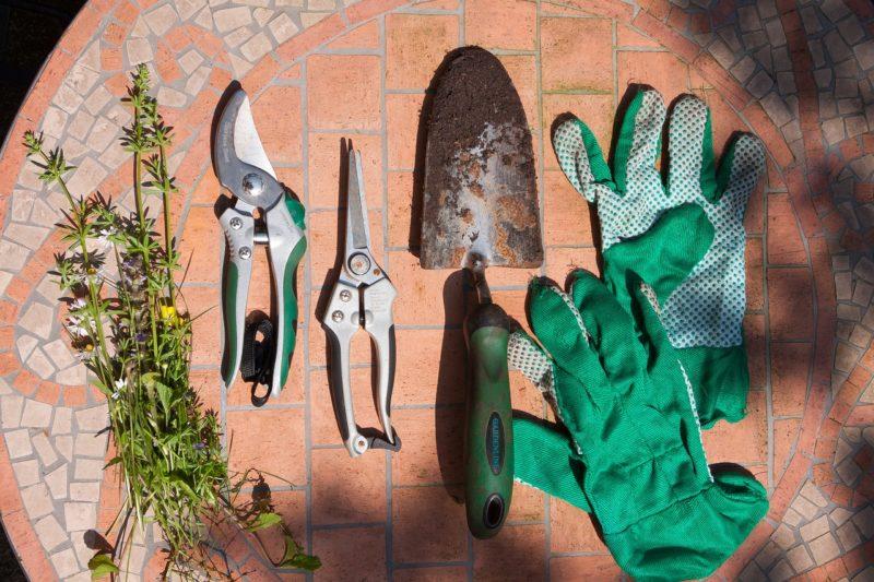 緑色の手袋とガーデニングセット